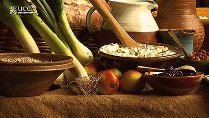 http://carolcmcgrath.co.uk/medieval-cooking-is-the-stomach-a-cauldron/